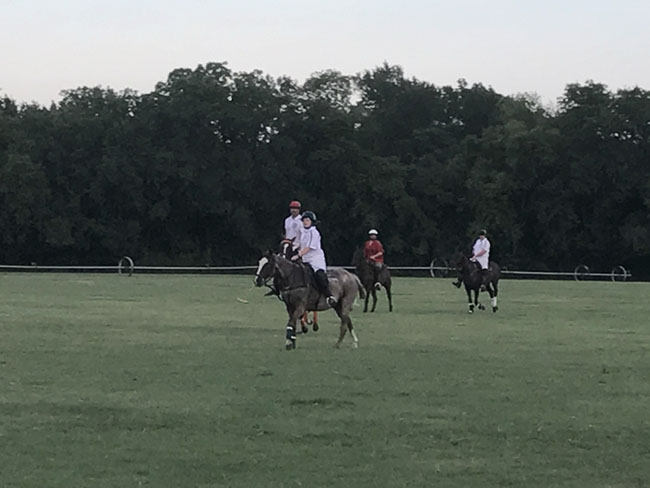 Dallas Polo 2