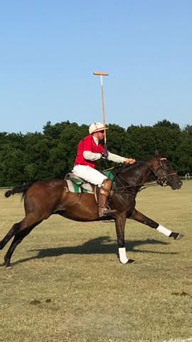 TX Polo Club 2